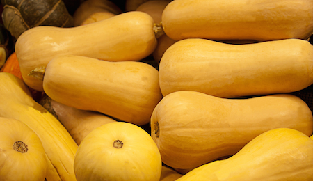 Bright Yellow Butternut Squash